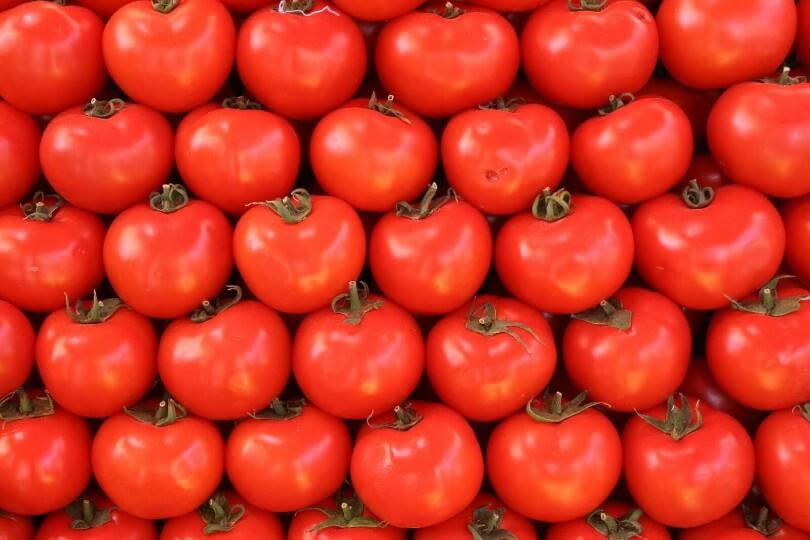Best Tomato Growing Tricks
