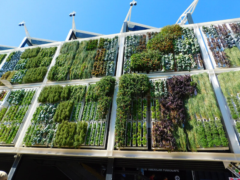 Vertical Gardening On Wall